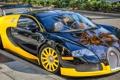Картинка спортивная, Bugatti Veyron, бугатти, желтая