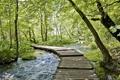 Картинка вода, мост, природа, ручей