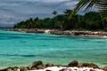 Картинка пляж, пальмы, океан, остров, бухта, лазурь, карибы