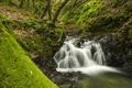 Картинка лес, река, водопад, California, Sveadal