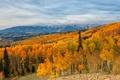 Картинка горы, облака, осень, лес, небо