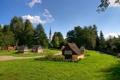 Картинка небо, трава, деревья, пейзаж, цветы, парк, башня