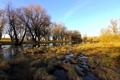 Картинка река, поле, деревья
