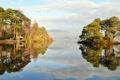 Картинка лес, небо, деревья, природа, озеро, отражение, фото