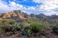 Картинка горы, скалы, кактусы, прерия, Texas, Big Bend National Park