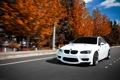 Картинка дорога, осень, белый, скорость, BMW, Ericsson