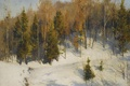Картинка зима, лес, снег, пейзаж, елки, картина, склон
