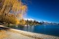 Картинка песок, осень, пляж, небо, деревья, горы, озеро
