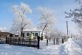 Картинка дорога, деревья, ворота, Зима, снег, дом