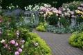 Картинка цветы, скамейка, сад, дорожка, Великобритания, Devon, Rosemoor Garden