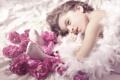 Картинка цветы, перья, розы, девочка