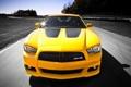 Картинка Желтый, Додж, Капот, Dodge, SRT8, Фары, Charger