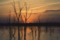 Картинка небо, вода, деревья, закат, природа, отражение, река