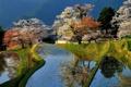 Картинка деревья, дом, пруд, весна, Япония, сад, цветение
