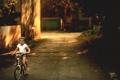 Картинка подворотня, лето, ребенок, вечер, велосипед, солнце
