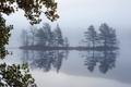 Картинка деревья, пейзаж, туман, озеро