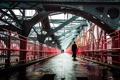 Картинка люди, Нью-Йорк, быт, Соединенные Штаты, ходьба, Вильямсбург мост