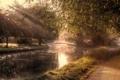 Картинка свет, деревья, пейзаж, парк, утро