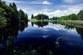Картинка лес, небо, трава, облака, природа, озеро