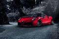 Картинка Red, Racing, Alfa-Romeo, Pogea