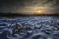 Картинка зима, поле, ночь