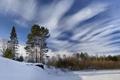 Картинка зима, небо, снег, деревья, пейзаж