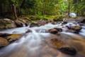 Картинка лес, парк, река, камни, поток