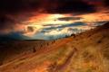 Картинка закат, горы, елки, склон