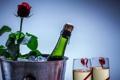 Картинка фон, роза, шампанское