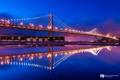 Картинка ночь, мост, огни, отражение, Сан-Франциско, photographer, Kenji Yamamura