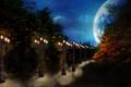 Картинка дорога, осень, небо, ночь, сумрак, Фонари