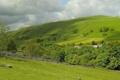 Картинка деревья, поля, Англия, пастбище, England, Kettlewell