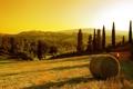 Картинка закат, золотое, солнце, стог, поле, Sunset in village, сено