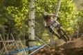 Картинка лес, велосипед, гонка, спорт
