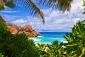 Картинка песок, море, пляж, небо, солнце, тропики, пальмы