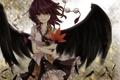 Картинка девушка, крылья, аниме, перья, арт, листик, touhou