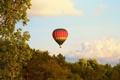 Картинка небо, деревья, воздушный шар