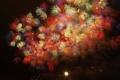 Картинка праздник, фейерверки, firework