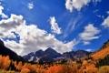 Картинка осень, лес, небо, облака, горы