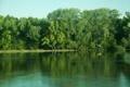 Картинка лес, небо, деревья, река