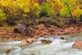 Картинка осень, деревья, река, камни, поток