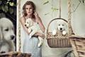 Картинка корзины, белые, блондинка, собаки, девушка, платье, щенки
