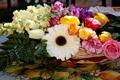 Картинка розы, тюльпаны, гербера, гвоздики
