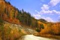Картинка дорога, осень, лес, небо, листья, облака, деревья