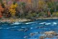 Картинка осень, лес, деревья, река, камни, поток