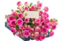 Картинка розы, открытка, ящик