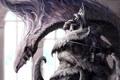 Картинка дракон, монстр, арт, парень, трон, Lee Sung-jae
