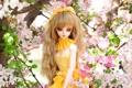 Картинка волосы, русые, вишня, кукла, игрушка, цветы