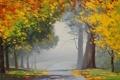 Картинка дорога, осень, асфальт, листья, деревья, пейзаж, желтые