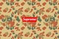 Картинка фон, фирма, supreme, clothes